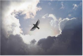 Poster Oiseau ange dans le ciel