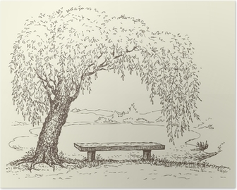 Old bench under a willow tree by the lake Poster