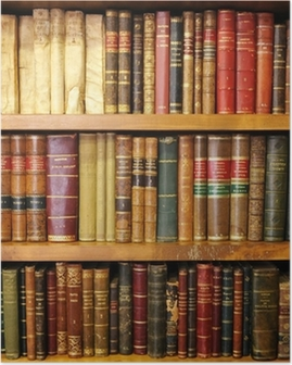 Old books, library Poster