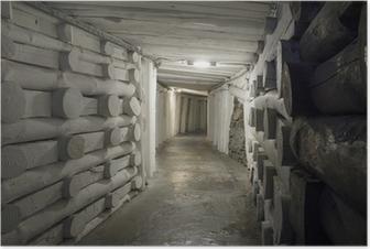 Poster Ondergrondse tunnel in de zoutmijn