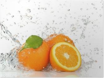 Orange fruits and Splashing water Poster