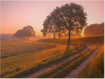 Poster Oranje en Roze Zonsopgang boven Landelijk Landschap in de buurt van Nijmegen