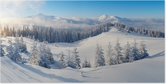 Panorama of winter mountains Poster