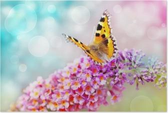 Poster Papillon sur fleur