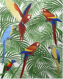 Parrot bird Poster