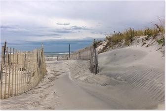 Path through sand dunes on a beach on Long Island, New York Poster