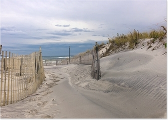 Path through sand dunes on a beach on Long Island, New York Poster