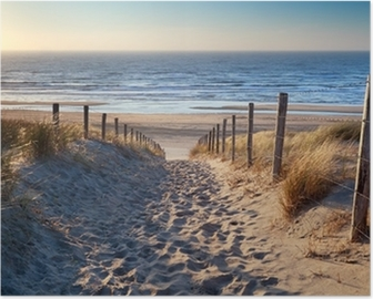 path to North sea beach in gold sunshine Poster