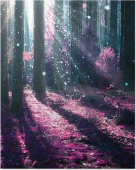 Poster Paysage d'imagination. Forêt mystérieuse vieille.