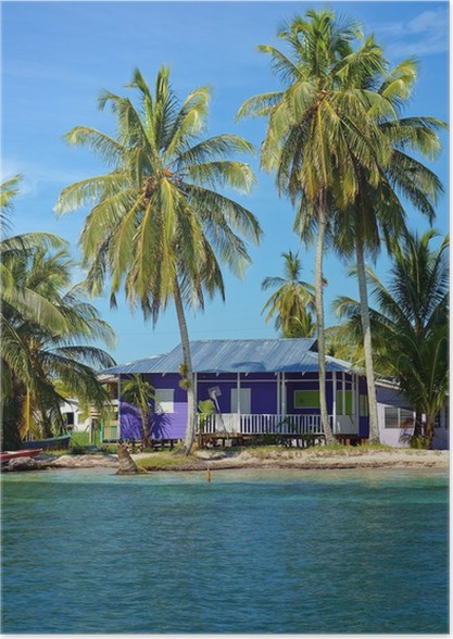 peaceful beach house under coconut tree poster pixers we live