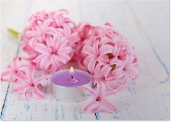 Pink hyacinth with candle on wooden background Poster