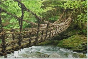 Pont de lianes et bambou Kazura-bashi à Oku Iya, Shikoku Poster