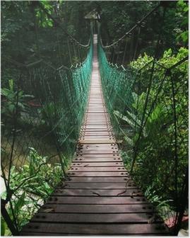 Poster Pont suspendu dans la jungle tropicale
