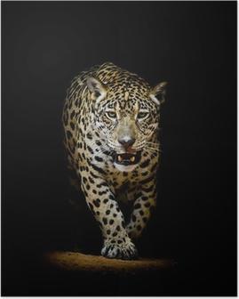 Poster Portrait Leopard