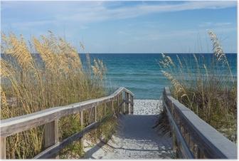 Poster Promenade sur la plage avec des dunes et de l'avoine de sable