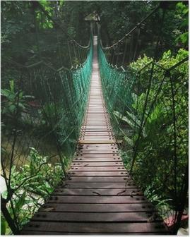 Póster Puente colgante en la selva tropical