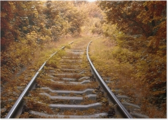 Railway track in autumn Poster