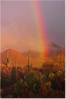 Rainbow sunset at the Saguaro National Park, Arizona, USA Poster