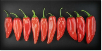 Poster Red hot chili pepper