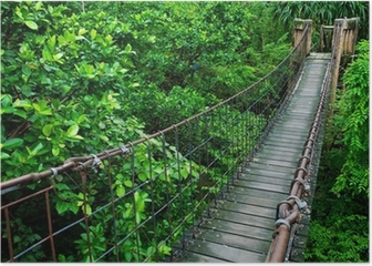 Rope walkway through the treetops in a rain forest Poster