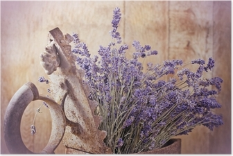 Rustic iron (old irin) and dry lavender Poster