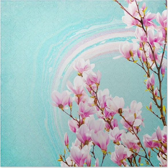 Shabby Chic Background With Magnolia Poster