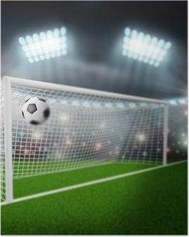 soccer ball flies into the goal Poster