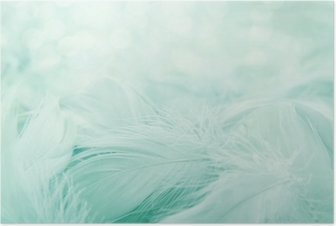 Soft fluffy feathers Poster