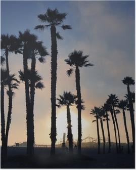 Poster Solnedgång och palmer, Santa Monica Beach, Los Angeles, USA