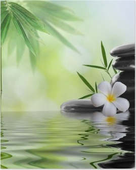 spa stones with frangipani Poster