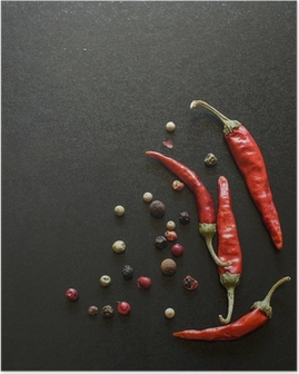 Spices on a blackboard Poster