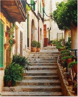 Street in Valldemossa village in Mallorca Poster