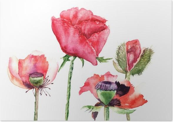 Stylized poppy flowers illustration poster pixers we live to change stylized poppy flowers illustration poster mightylinksfo
