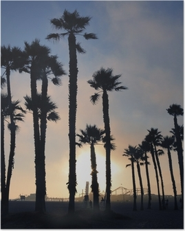 Sunset and palm trees, Santa Monica beach, Los Angeles, USA Poster