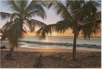 Poster Sunset beach palmträd vågor