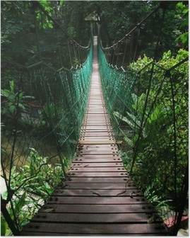 suspension bridge in the tropical jungle Poster