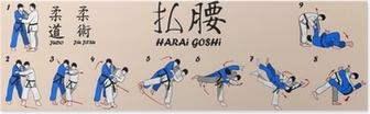 Poster Technique de l'art Judo Martial