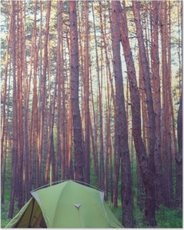 Tent in the forest Poster