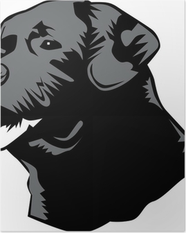 Poster Tête Labrador