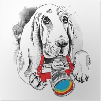 The poster with the image of the dog with the camera. Vector illustration. Poster