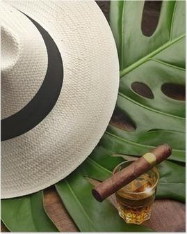 the spirit of Cuba Poster