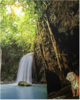 Poster Tijger in de jungle.