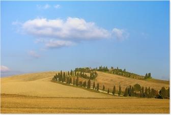 Poster Toscane, Crete Senesi landbouwgrond, cipres en velden. Italië.