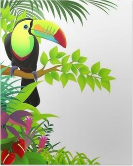 Poster Toucan oiseau dans la jungle