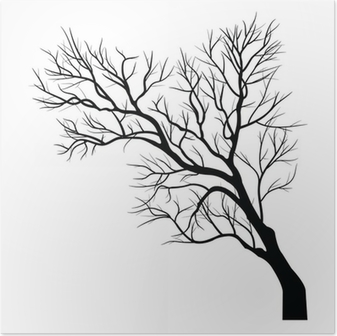 Trees with dead branch Poster