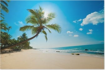 Tropical beach in the sun Poster