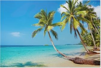 Poster Tropisch beach