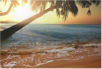 Poster Tropisk strand