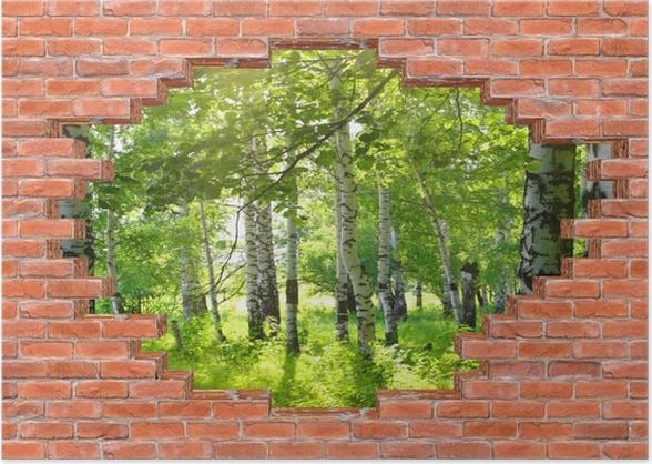 Poster Trou dans le mur - l'été. les forêts de bouleaux. - Les trous dans le mur