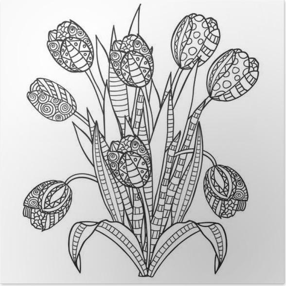 Póster Tulipanes, flores, negro ornamental y páginas para colorear ...